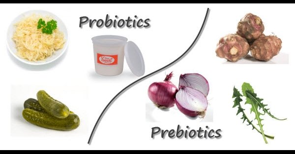 c600x315_probiotic_vs_prebiotic